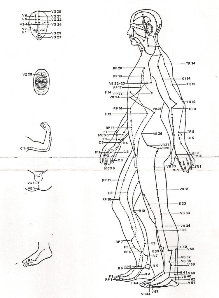 Schéma représentant les méridiens sur le corps, notamment le Maître Cœur et le Triple Réchauffeur.